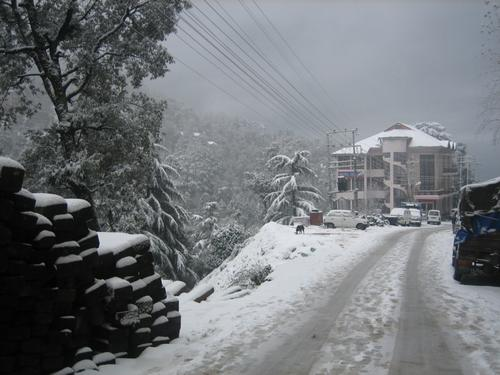 Dalhousie snow fall